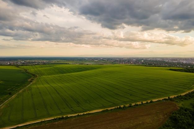Vue aérienne du paysage de champs agricoles cultivés verts avec des cultures en pleine croissance par une belle soirée d'été.
