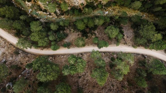 vue aérienne du paysage des forêts