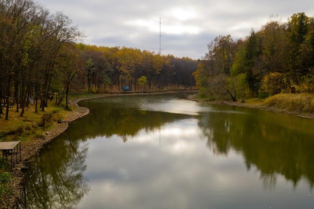 Vue aérienne du petit lac dans la forêt.