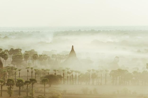 Vue aérienne du site historique du temple de bagan. pagodes et temples bouddhistes dans la jungle