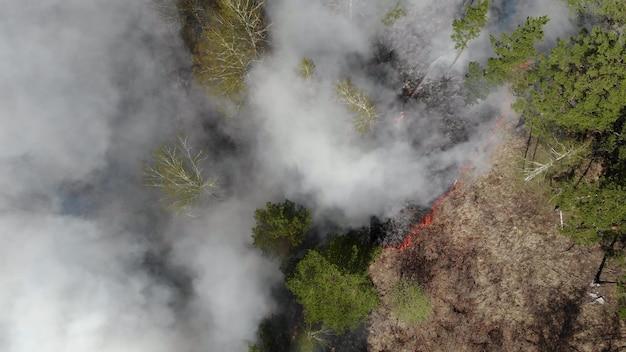 Vue aérienne épique du feu sauvage. de gros nuages de fumée et le feu se propagent. déforestation des forêts et de la jungle tropicale. incendies de forêt en amazonie et en sibérie. l'herbe sèche brûle. changement climatique, écologie, terre