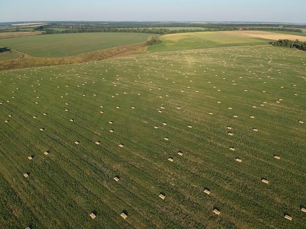 Vue aérienne de foin empilé sur le champ de blé sous le ciel. champ d'ambroisie. photographie de drone.