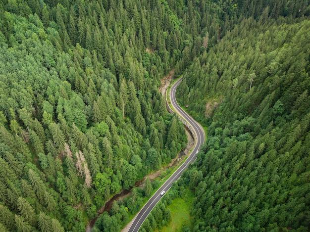 Vue aérienne d'une forêt de conifères traversée par une route sinueuse dans les montagnes