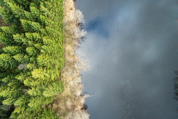 Vue aérienne d'une forêt couverte de conifères et d'arbres nus et entourée d'un lac