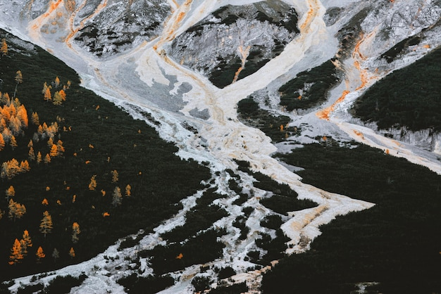 Vue aérienne de la forêt et de la lave du volcan en éruption