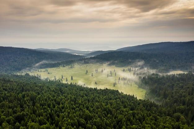 Vue aérienne de la forêt de montagne un jour d'été