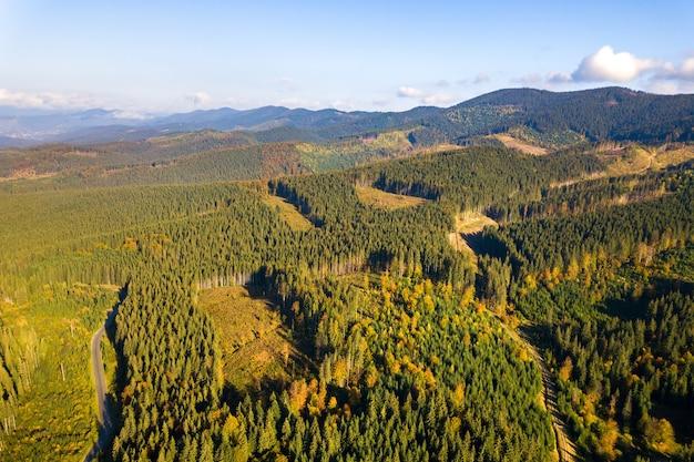 Vue aérienne de la forêt de montagne avec des zones de déforestation nues d'arbres coupés.