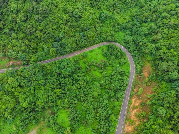 Vue aérienne, de, forêt, route, dans, montagne