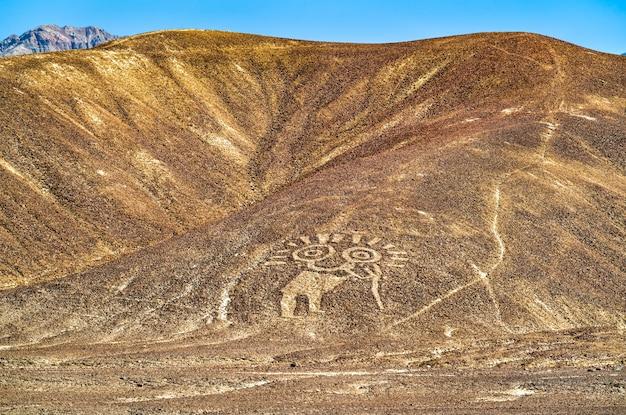 Vue aérienne des géoglyphes de palpa. patrimoine mondial de l'unesco au pérou