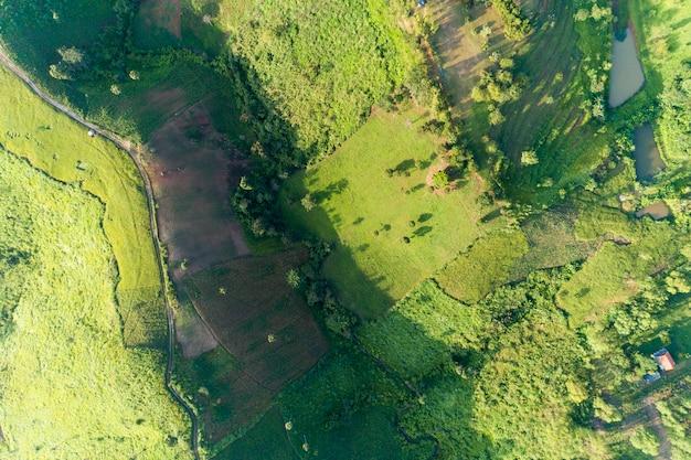 Vue aérienne de haut en bas de la montagne texture de la nature paysage forestier vue beau lever de soleil léger sur la montagne