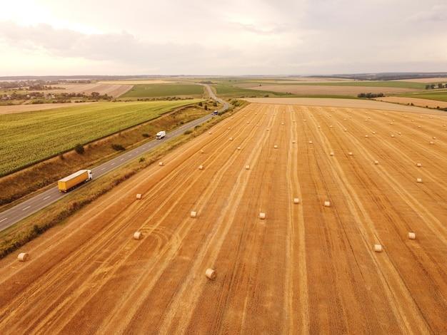 Vue aérienne de haut en bas des rouleaux de paille de blé dans le champ