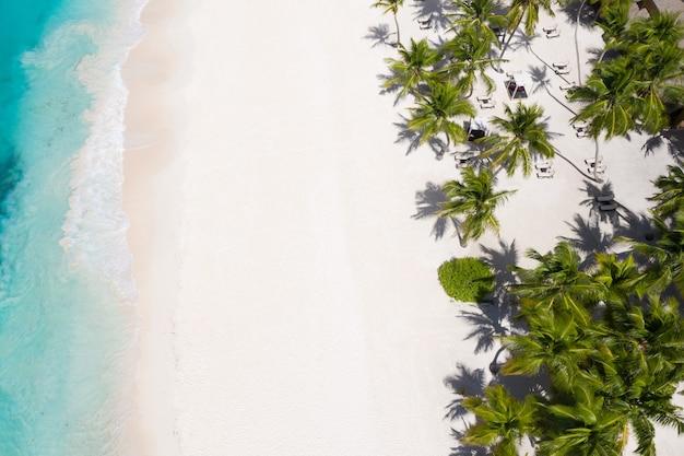 Vue aérienne d'une île tropicale avec palmiers