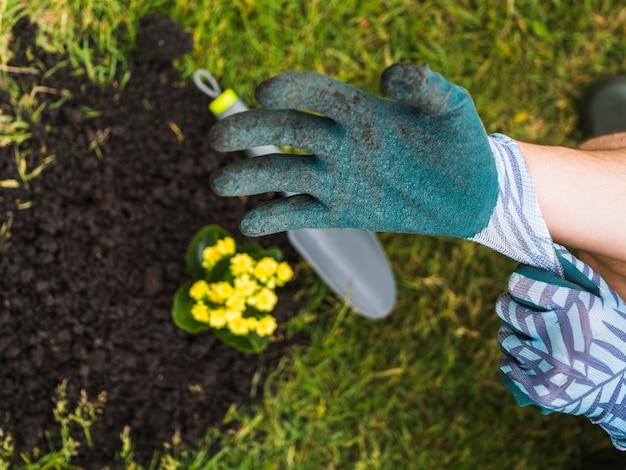 Vue aérienne de la main du jardinier portant un gant
