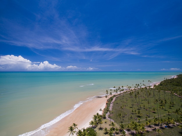 Vue aérienne de la mer verte sur une plage brésilienne sur une journée ensoleillée à barra do cahy,