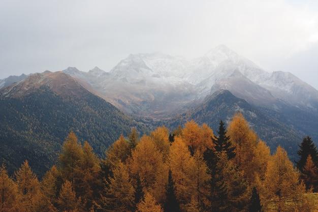 Vue aérienne d'une montagne