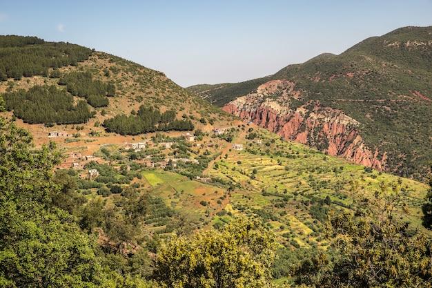 Vue aérienne des montagnes couvertes d'arbres et de végétation