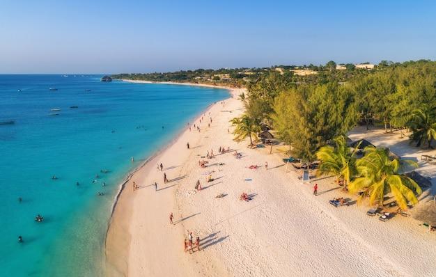 Vue aérienne de palmiers sur la plage de sable de l'océan indien