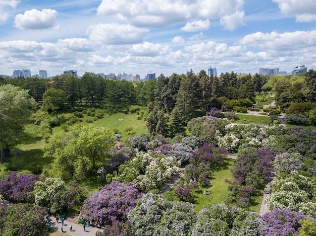Vue aérienne de personnes marchant dans un magnifique jardin botanique vert en été, bâtiments de la ville à l'horizon