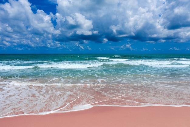 Vue aérienne de la plage rose et des vagues de l'océan bleu.