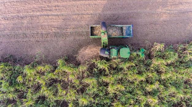 Vue aérienne de la récolte de canne à sucre