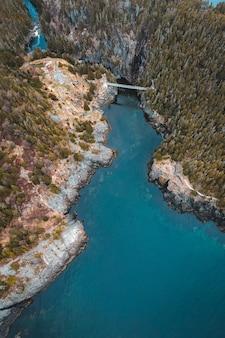 Vue aérienne de la rivière entre les arbres verts pendant la journée
