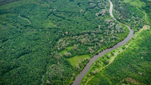 Vue aérienne sur la rivière qui se trouve sur la forêt verte.