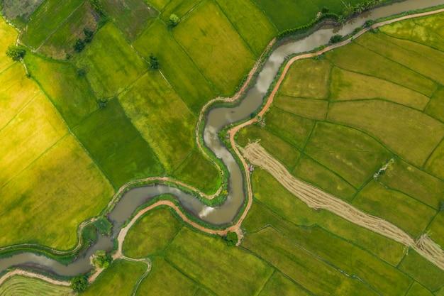 Vue aérienne de la rivière tortueuse dans un champs
