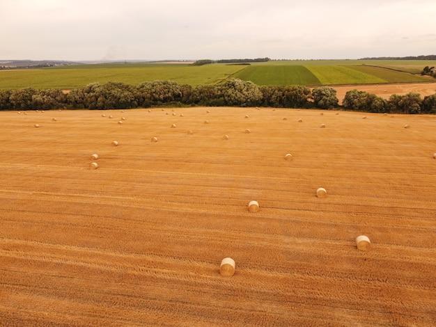 Vue aérienne des rouleaux de paille de blé dans le champ