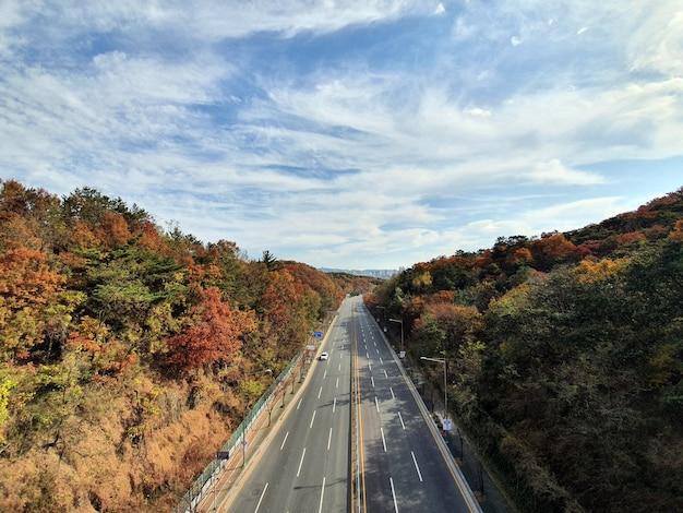 Vue aérienne de la route goudronnée dans la belle forêt d'automne