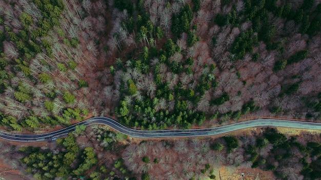 Vue aérienne d'une route sinueuse entourée de verdure et d'arbres