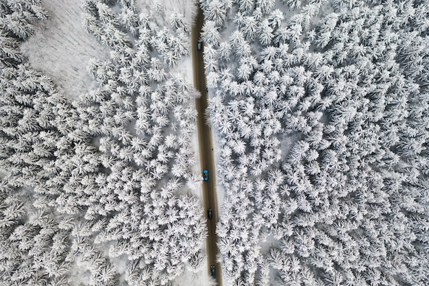 Vue aérienne de la route avec des voitures dans la forêt d'hiver avec de hauts pins ou épinettes couvertes de neige. conduire en hiver.