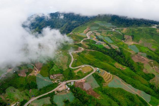 Vue aérienne de serpentins de la route
