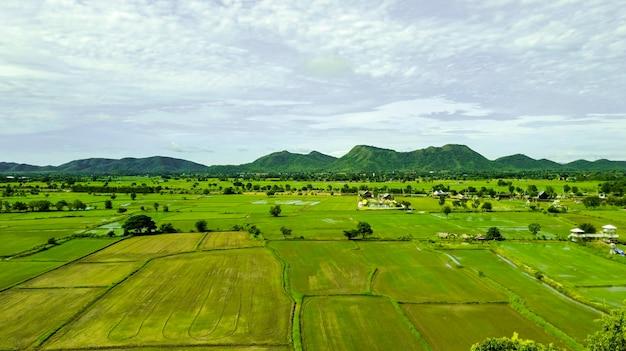 Vue aérienne de la terrasse des rizières vertes en thaïlande, belle vue sur le paysage des rizières vertes avec la montagne