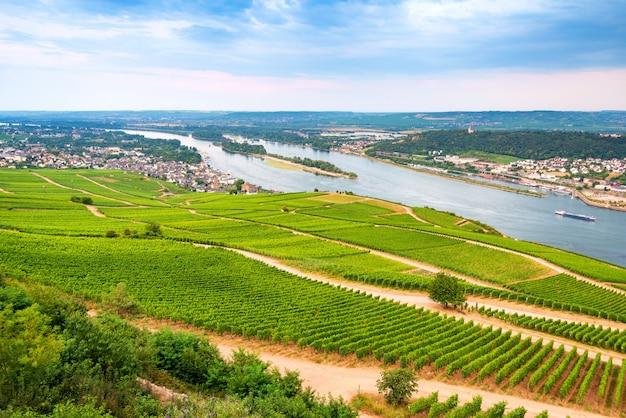 Vue aérienne de la vallée du rhin avec de grands massifs de vignes à côté.