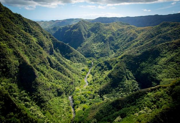 Vue aérienne d'une vallée verdoyante à kauai hawaii