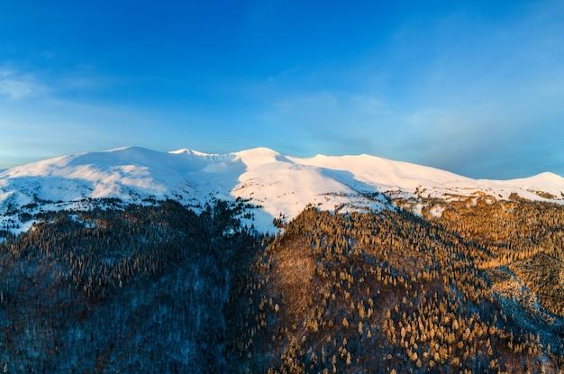 Vue aérienne vue imprenable sur les montagnes et les pentes couvertes de fourrés denses de sapins