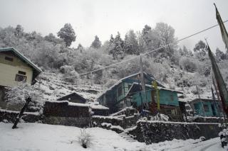 Vue sur les alpes, les arbres, de l'himalaya