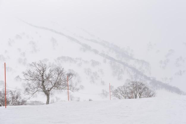 La vue de l'arbre et de la montagne avec de la neige duveteuse