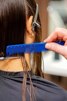 Vue arrière d'un coiffeur masculin coupe les cheveux de jeune femme avec siscors et peigne