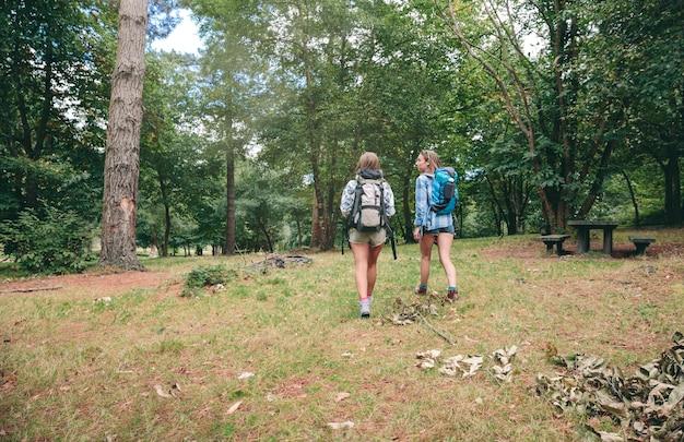 Vue arrière de deux amies avec des sacs à dos marchant dans la forêt