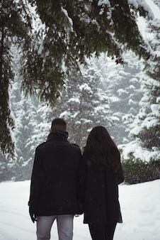 Vue arrière du couple marchant dans la forêt enneigée