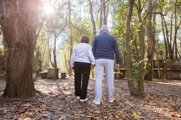 Vue arrière du couple de retraités marchant au coucher du soleil