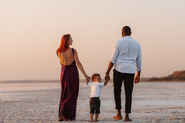 Vue arrière de la famille heureuse marchant ensemble et main dans la main sur la nature. portrait de vacances en famille