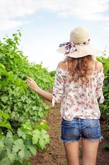 Vue arrière d'une fille marchant dans un vignoble avec les bras tendus.