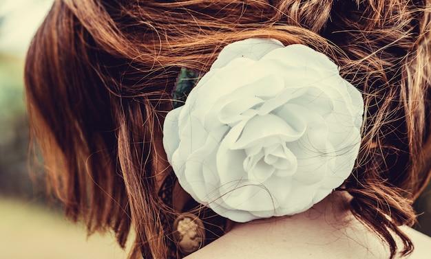 Vue arrière de la grande et blanche fleur de coton