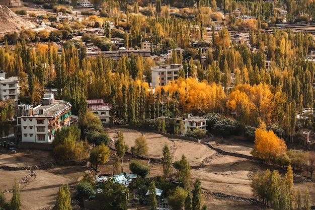 Vue d'automne du paysage dans le district de leh ladakh, partie nord de l'inde