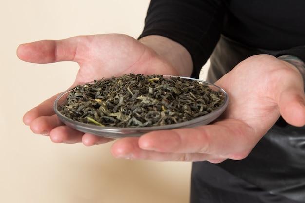 Une vue avant jeune barista holding plaque avec du thé séché
