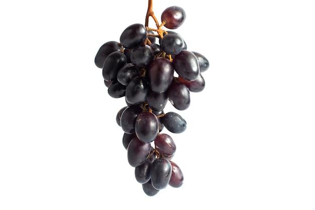 Vue avant des raisins juteux frais moelleux noir ed sur fond blanc