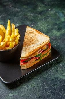 Vue avant des sandwichs au jambon avec des frites à l'intérieur de la plaque sur une surface sombre