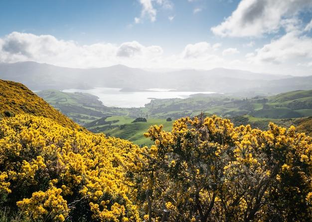 Vue sur la belle vallée avec un feuillage jaune intéressant en premier plan la péninsule des banques en nouvelle-zélande